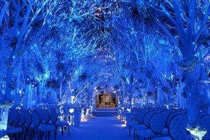 winter-wedding-winter-wonderland-ceremony-decor-preston-bailey